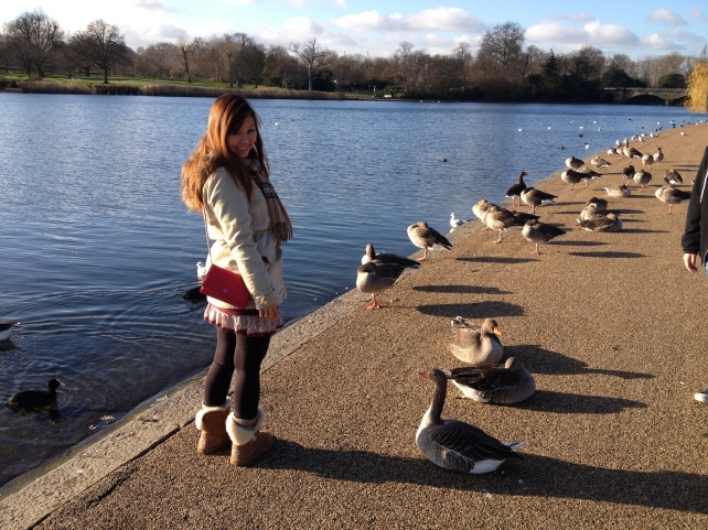 Just me trying to dare the ducks....