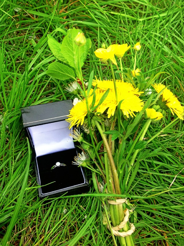 The Ring & The Flowers.
